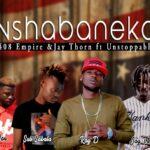 408 Empire & Jay Thorn – Nshabaneka (Pro by Gene B)