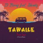 """Dbwoy Ft. Shenky – """"Tawaile (True Love)"""""""