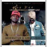 Ray Dee (408 Empire) ft. Chef 187 – Ndebutuka Ubuchushi