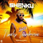 Shenky – Ninshi Taumbwene