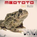 Mbototo AmaBlax – Danger (Prod. By Nizzy Pro)