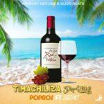 Popros ft. Dizmo – Timachiliza Daily