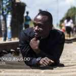 Yellow Dove – What Would Jesus Do?