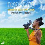 LRoxy ft. KFK & Luff Cool – Insansa