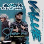 Burna ft. Mujomba – Value (Show me)