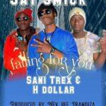 Jay Smick ft. Sani Trex & H Dollar – Falling For You