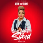 Meek ft. Blake – One Night Stand