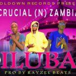 Crucial Niggers ft. Chimbo Swag – iluba