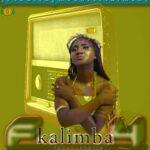 F4 – Kalimba