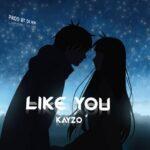 Kayzo – Like You (Prod. By DJ H.M)