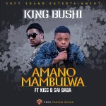 King Bushi ft. Kiss B Sai Baba – Amano Mambulwa